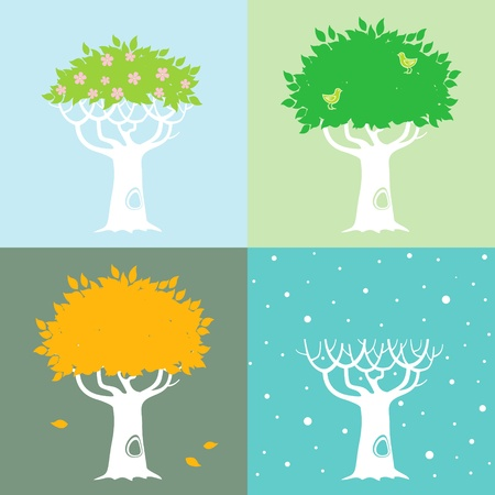 ash: Illustrations of the tree in different seasons in the spring, summer, autumn and winter