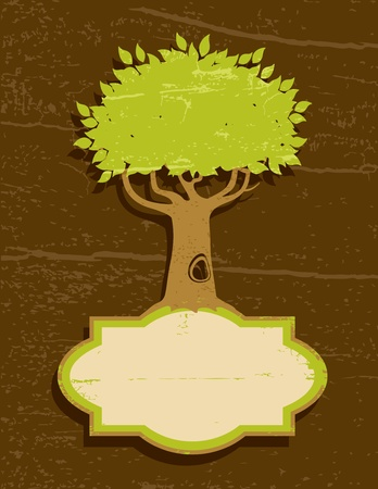 tree roots: Vintage illustration of a tree with green foliage