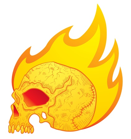 Illustration of the skull in flames Stock Vector - 10543729