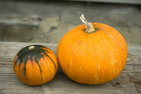 The three bright pumpkins on a wooden bench photo