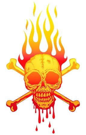 Illustration of the skull in flames Vector