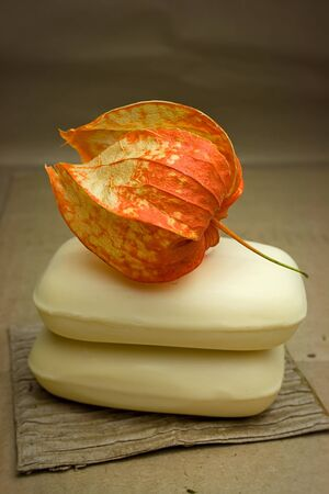 Two pieces of soap and orange physalis Stock Photo - 12684739