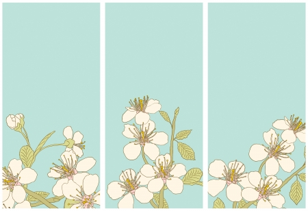 Banners with flowers of the cherry blossoms Vector