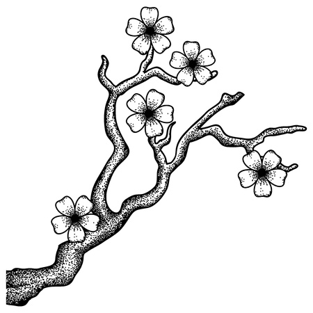 Illustration of a blossoming cherry tree branch in a retro style Vector