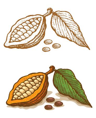Illustrationen von Kakao im Retro-Stil Vektorgrafik