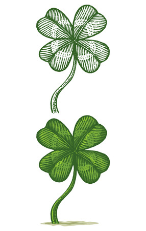 Illustrations of clovers Vector