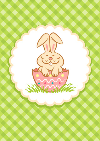 Illustration of Easter Bunny in the egg shell Vector