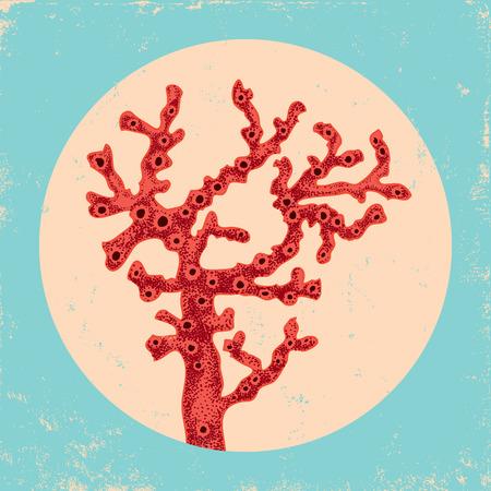 invertebrates: Vintage illustration of a red coral underwater Illustration