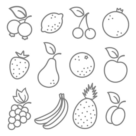 Vector set flat illustration of a fruits Vector
