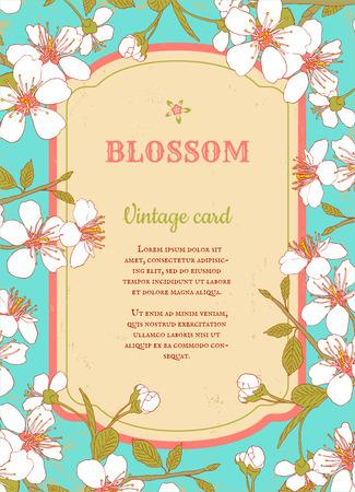 cherry blossom illustration: Retro poster with cherry blossom