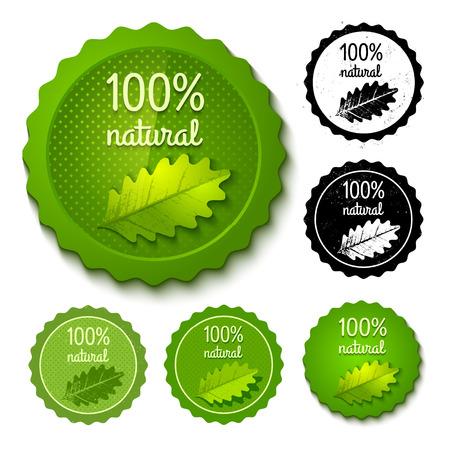 logo recyclage: Vector set de nouveaux timbres et rétro éco