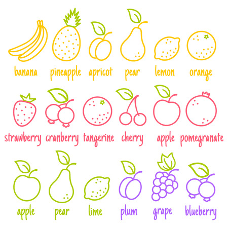 cranberry illustration: Vector set flat icons of a fruits Illustration