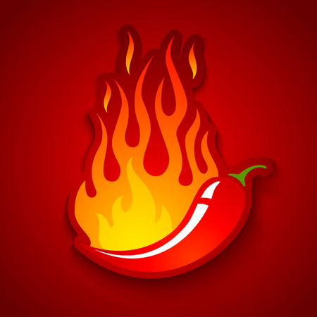 Vector illustration of a chili pepper in fire Çizim