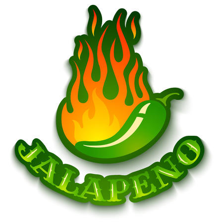 jalapeno: Vector illustration of a hot jalapeno pepper in fire