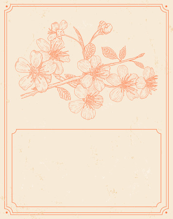 Vintage card with flowers of the cherry blossoms Ilustracja