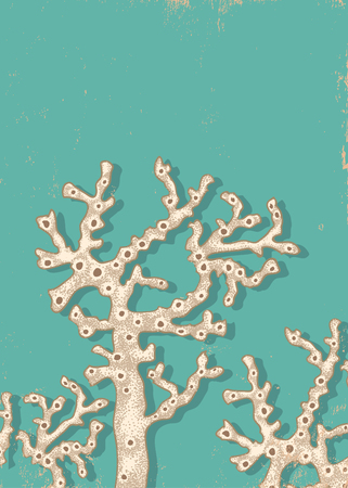 polyp: Vintage poster with a white corals Illustration