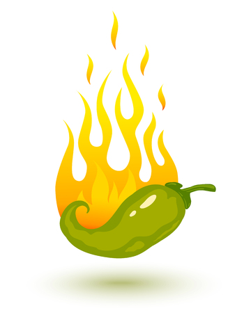 chili sauce: Vector illustration of burning chili pepper in fire