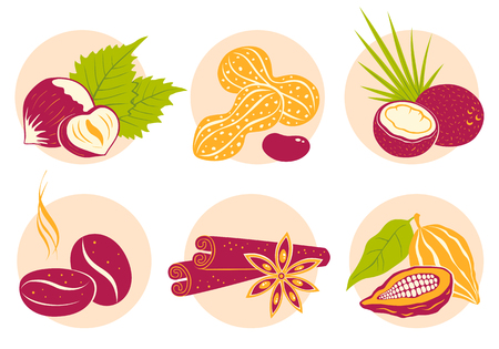 Vector vintage set nuts icons on pink background. Coffee beans, coconut, star anise, cinnamon, cocoa and peanuts. Illustration
