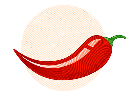 Vintage vector chili peppers in engraving style. Retro illustration of a chili peppers. Illustration