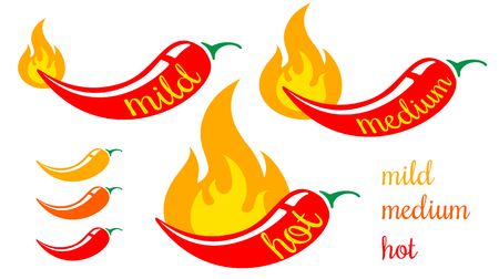 Vector chilli peppers in fire. Levels of Red chili pepers. Mild, medium and hot chilli pepper. Stock Illustratie