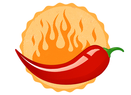 Vintage vector chilli pepper in engraving style. Retro illustration of a chili pepper.