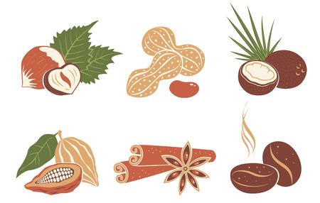 Vecteur défini des icônes de noix. Grains de café, noix de coco, anis étoilé, cannelle, cacao et cacahuètes.