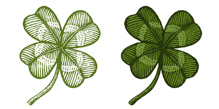 Vector vintage clover for Patricks day. Vintage green lucky clovers in engraving style.