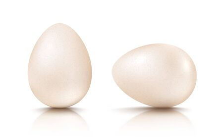 Vector set realistic white eggs. Vector white egg on isolated background. 3d eggs.