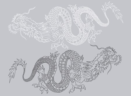Vector illustration of two Chinese dragons. Black and white asian dragons.