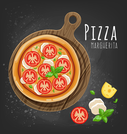 Fresh Margherita pizza and ingredients. Vector illustration