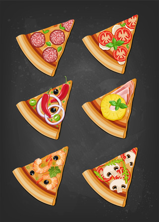 Various six slices of pizza. Vector illustration.