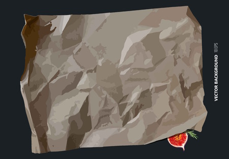 Parchment paper with fig. Vector background Çizim