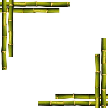 Bamboo frame on a white background with copy space photo