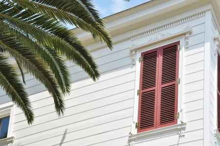 hause: Red shuttered house and palm tree