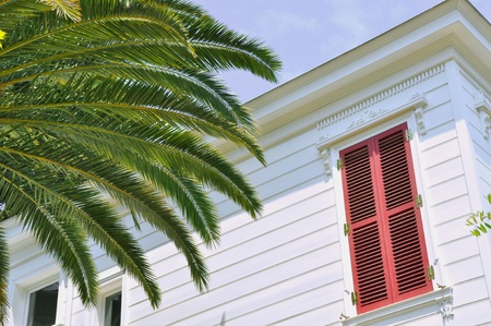 Red shuttered house and palm tree photo