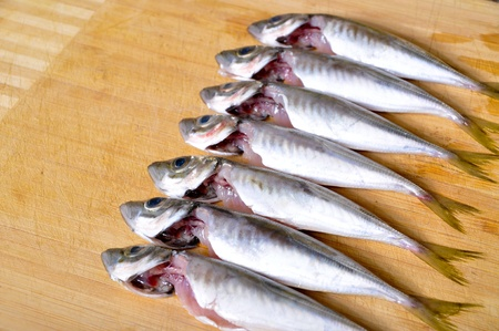 Ready to cook the fish was fresh and tasty Stock Photo - 18667288