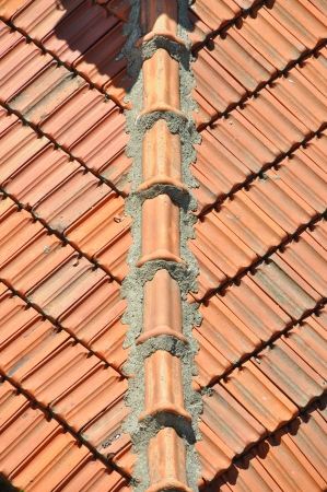 cladding tile: Tile on a roof  Texture or background