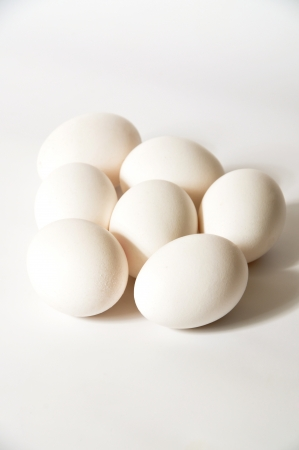 Fresh and organic white eggs photo