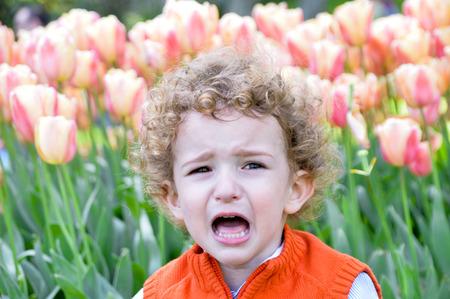 enfant qui pleure: Un enfant qui pleure parmi les fleurs