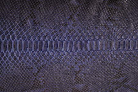 textile  texture: Subsequently painted natural python skin close up