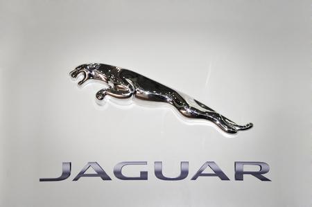 path to wealth: Close up a Jaguar logo. Chrome metal