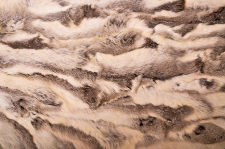 Naturally derived brown and white animal fur