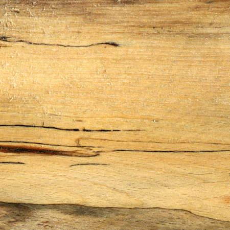 Wood grain texture. Hornbeam wood, can be used as background, pattern background