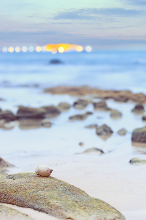 gentle dream vacation: Seascape with spiral shell on ocean shore and glowing bokeh background Stock Photo