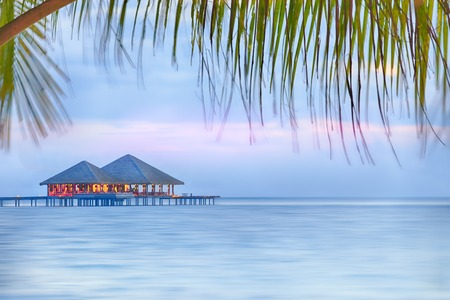 gentle dream vacation: Resort in middle of the ocean with palm-branch foreground Stock Photo