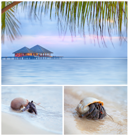 gentle dream vacation: Seascape collage. 3 high resolution images of the beach