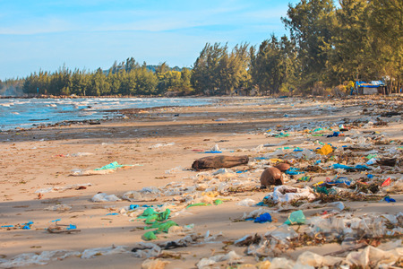 Terrible pollution of the ocean shore. Ecological disaster