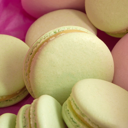 Delicious sweet buffet with green macarons in a box. close-up shot photo
