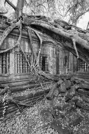 Beng Melea Temple Ruines dans le milieu de la forêt jungle Banque d'images - 43543318