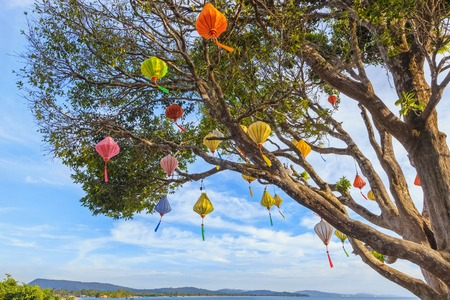 downshift: Beautiful asian garden: old tree wih chinese lanterns on the beach